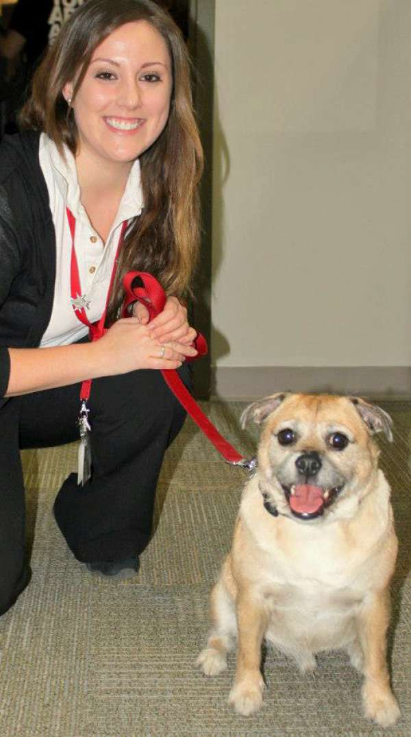 Sja Therapy Dog Megan And Jake
